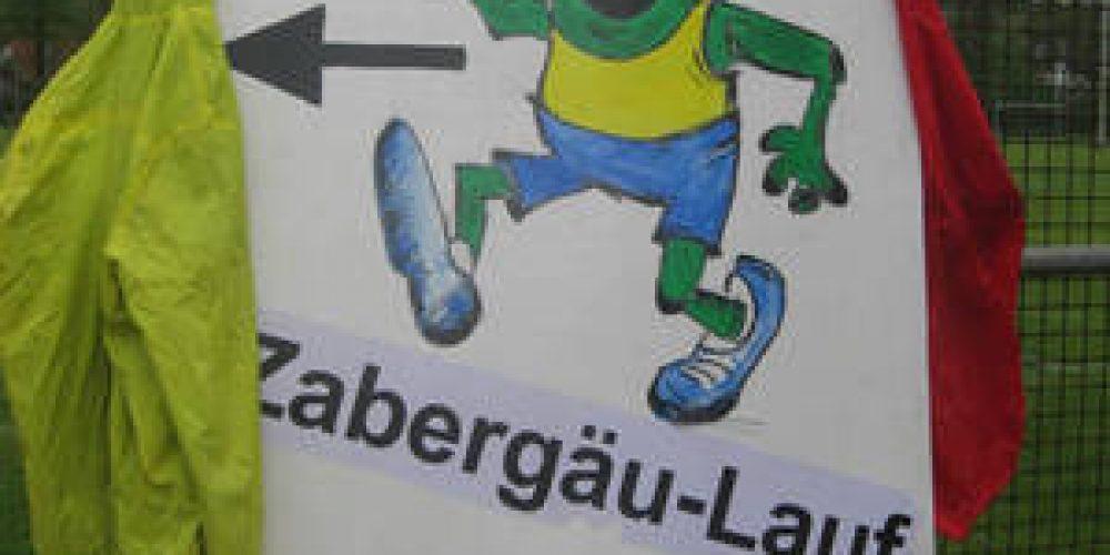 15. Zabergäu-Lauf: Online-Anmeldeportal öffnet am 1. Dezember 2016